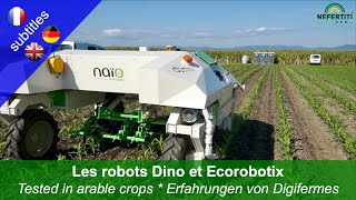 Weed control with the robots Dino and Ecorobotix in arable crops – experiences made by Digifermes