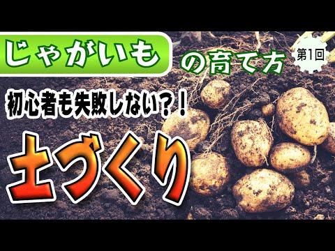 , title : '#1.ジャガイモの育て方【土作り】初心者もかんたん!有機肥料でたくさん収穫できる土を目指します!