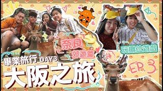 〖8日7夜大阪之旅〗DAY3⎪♡奈良郊遊篇 友人進化成奈良鹿✨暴走了!!!