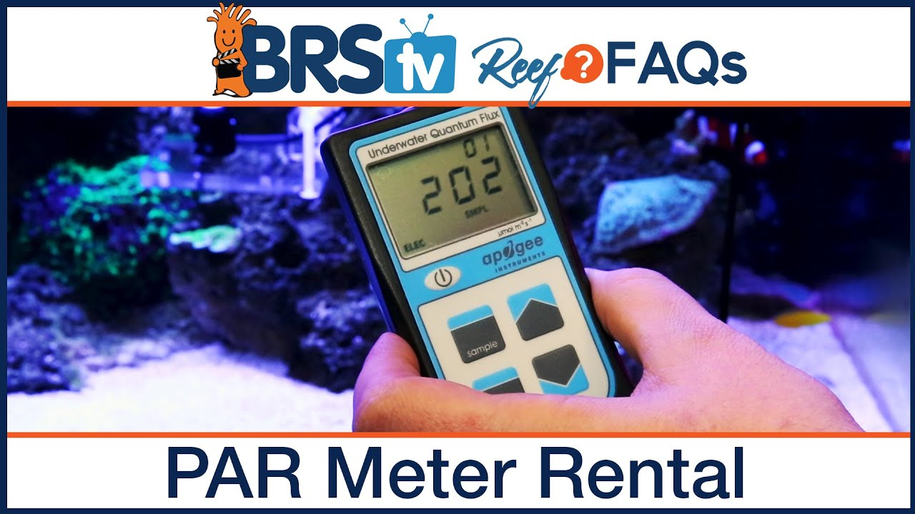 PAR meter rental: Setting your reef tank LED lighting schedule - Reef FAQs