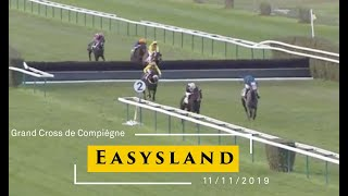 Easysland by Gentlewave Winner of 9 races including: The Listed Cross Country Chase's at Compiegne and Pau. The Glenfarclas Cross Country Chase at the Cheltenham Festival, 2020, beating Tiger Roll by 17 lengths.