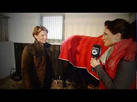 Loesdau Lessons: Basics mit Kati: Pferde im Winter richtig eindecken