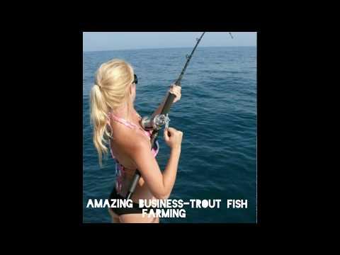 , title : 'Amazing TROUT Fish Farming Business.#MSMB