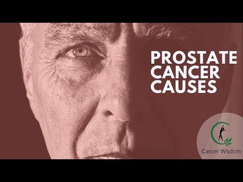 Prostate taureau paille Massager