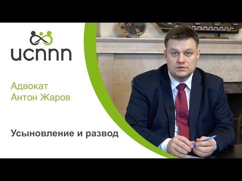 Усыновление и развод. ИСППП и адвокат Жаров