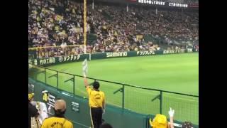 雨天中断時阪神園芸にエール阪神甲子園球場