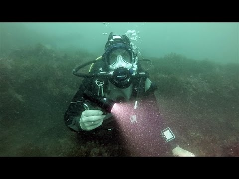 Scuba Diving Equipment Review: Big Blue 2800P Photo and Video Light