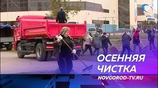 В общегородском субботнике приняли участие около трех тысяч новгородцев
