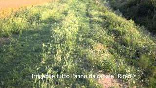 preview picture of video 'La Terra investimento sicuro - Terreno agricolo in S. Giorgio di Piano (Bologna)'