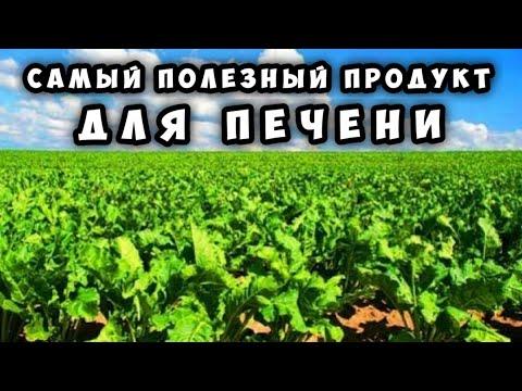 Санаторное лечение печени украине