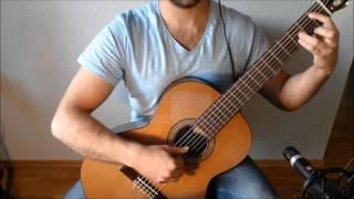 The Bannered Mare - The Elder Scrolls V: Skyrim on Guitar