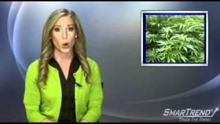 News Update: California May Issue Marijuana Bonds If Prop 19 Passes