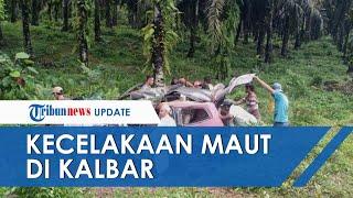 Kecelakaan Maut di Kalimantan Barat, Mobil Isi 9 Penumpang Tabrak Pohon Sawit dan Tewaskan 5 Orang