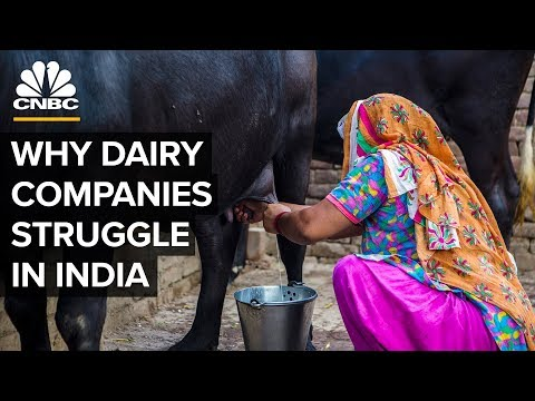 , title : 'Why Big Dairy Companies Struggle In India