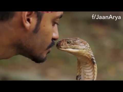 Man Kisses Cobra Head