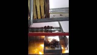 descapacitor si centrifuga homemade