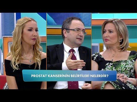 Mágneses terápia Prosztata Véleményekkel