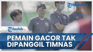 Deretan Pemain Gacor yang Tak Dipanggil Shin Tae-yong ke Timnas Indonesia