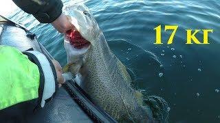 Лучшее время для рыбалки на баренцевом море