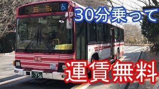 無料バス毎月17日運行のシャトルバスで岩間寺へ参拝