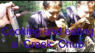 Primitive Cooking A Creek Chub