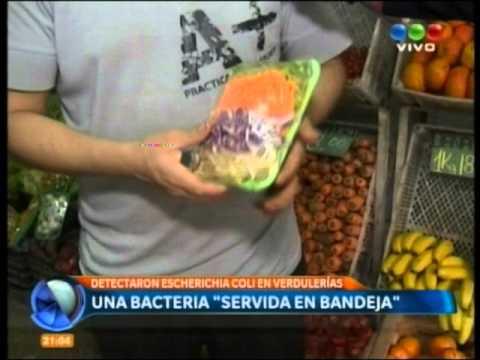 ESCHERICHIA COLI en VERDURAS en BANDEJAS
