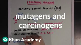 Grade 10 Science   Mutagens and Carcinogens   Khan Academy