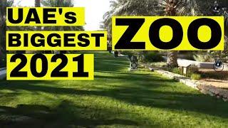 Al Ain Zoo I Abu Dhabi I UAE I Complete Tour