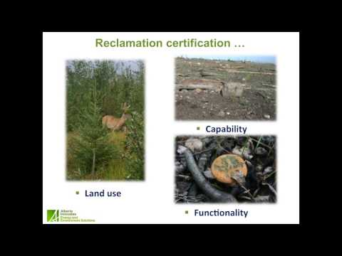 Resiliencia ecológica: ¿concepto significativo para la regulación de recuperación?
