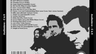 Audioslave ~ Working Man