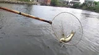 Электро сачок для ловли рыбы своими руками