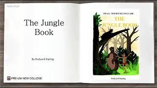 Term 1 Year 4 Novel Summary The Jungle Book