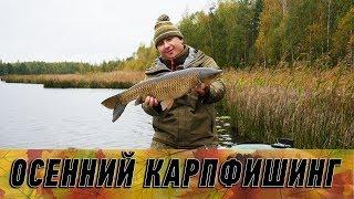 Карпфишинг поздней осенью. Ловля карпа по холодной воде!