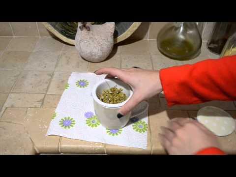 Candele allatto di trattamento di uno sciame di haemo
