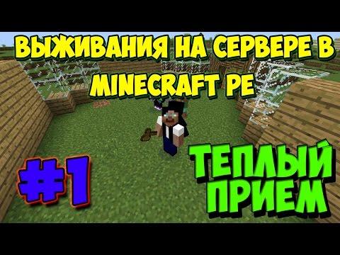 Выживания на сервере в Minecraft PE #1 [Тёплый приём]
