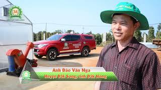 Mô Hình Trồng Tiêu Công Nghệ Mới Tại Đắk Nông