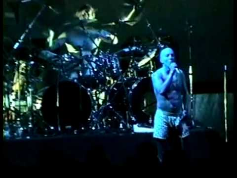 TOOL - AENIMA LIVE New Jersey 1997