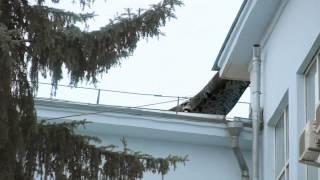 Гигантская змея ползает по крыше в Самаре   Giant snake on a roof in Samara