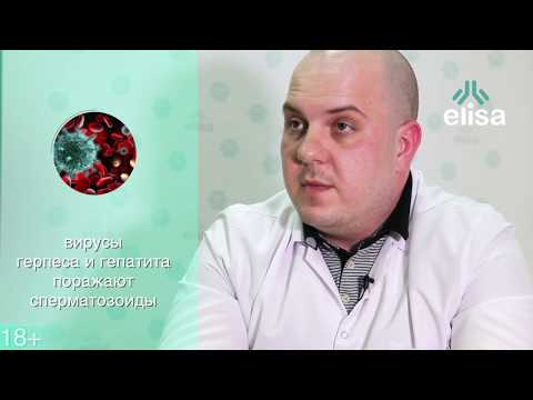 Качество спермы: что влияет на зачатие у мужчин?