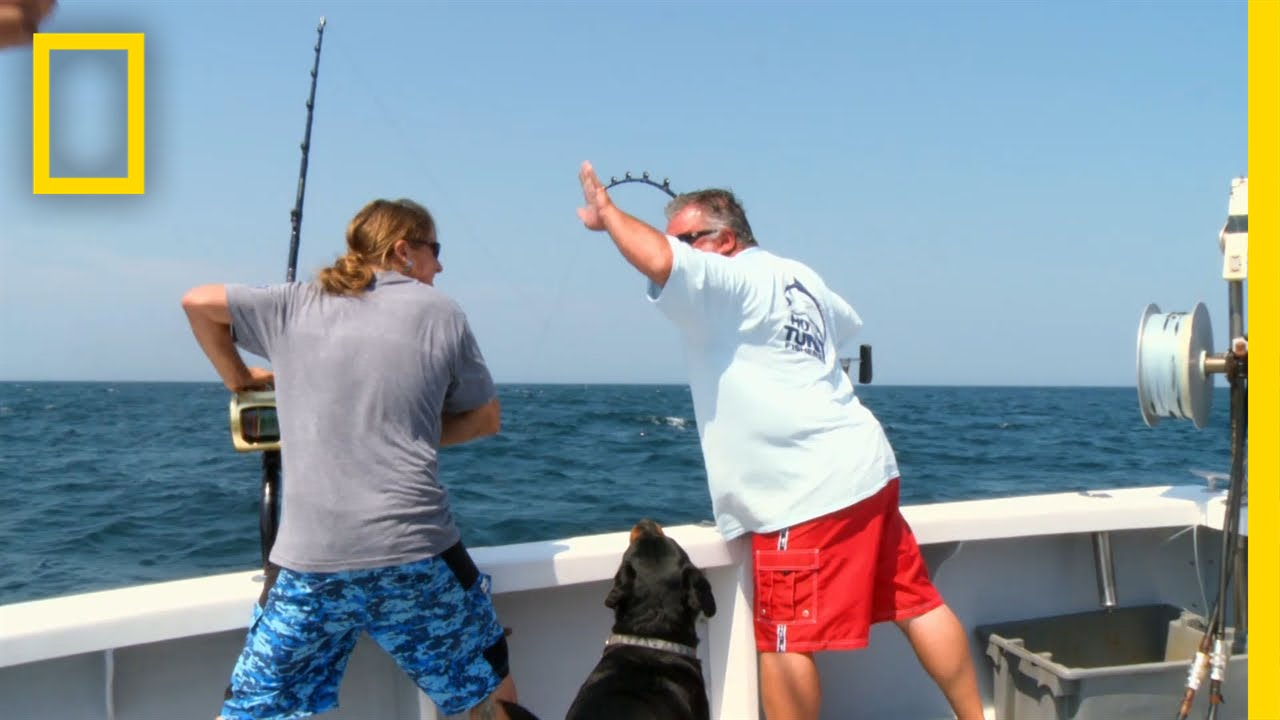 Outhouse to the Penthouse | Wicked Tuna thumbnail