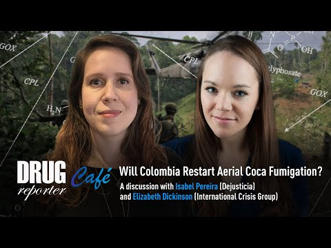 Will Colombia restart aerial coca spraying? | Drugreporter Café