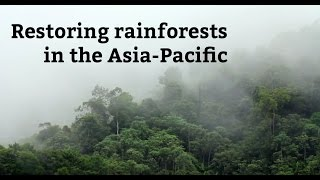 Restoring rainforests in the Asia-Pacific: IUCN