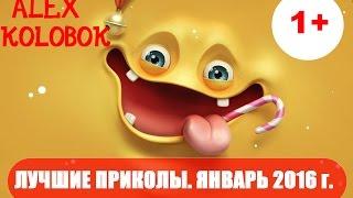 Лучшая Подборка Приколов. Январь 2016 г