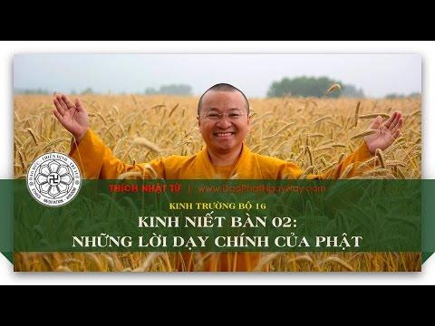 Kinh trường bộ 16 - Kinh Niết bàn 2 - Những lời dạy chính của Phật (14/06/2014) - Thích Nhật Từ