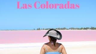 TOUR LAS COLORADAS ¿Que incluye? ¿Cuanto cuesta?, TIPS | EL MAR COLOR ROSA | TOUR DESDE CANCUN?