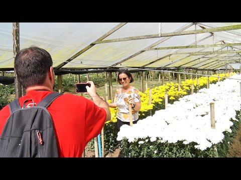 Você sabia? Circuito das Flores é a nova atração turística de Nova Friburgo
