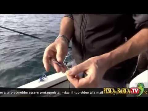 Pescando enotayevka i pos barattano il video