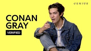 """Conan Gray """"Crush Culture"""" Official Lyrics & Meaning 