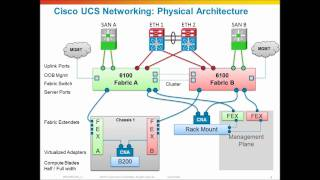 Cisco UCS Networking, Physical network architecture