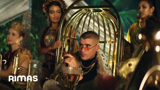 Ni Bien Ni Mal   Bad Bunny ( Video Oficial )